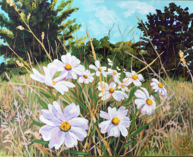 Blackfoot Daisy on a Summer's Day by Sharon Loy Anderson