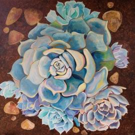 Echeveria 'Encatata' Sharon Loy Anderson