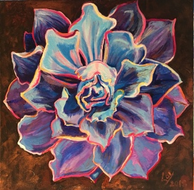 Echeveria 'Afterglow' by Sharon Loy Anderson
